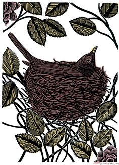 Rachel Hutchins - Blackbird