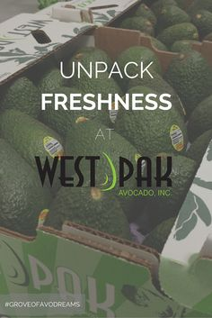 Welcome to your #Avocado HQ, the new West Pak is here.