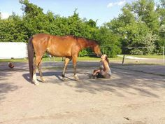 #horseandme