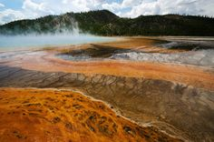 Orange Bacterial Thermophiles ~ Grand Prismatic Spring, Yellowstone National Park, Photo, Print, Art, Travel Photo Bacterial Mat, steamy hot by DajDesigns on Etsy