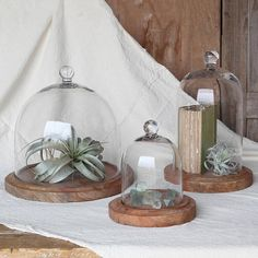 These are beautiful. I like the idea of putting a book in one- we have some pretty old books that we'd like to pass down so these would be great.Glass Dome, Glass cloche, Sweet Holder, Cheese Plate, Home Decor Glass Dome Display, Glass Dome Decor, Wedding Centerpiece, tabletop display #affiliate