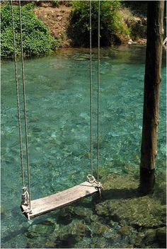 I had this wonderful swing just outside my bedroom.  I could swing way out and be able to jump into warm clear water...