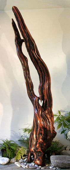 Polished driftwood