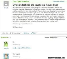 Dog's testicles caught in mouse trap