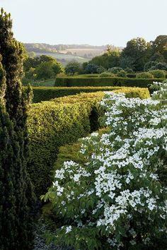 d    9/17  Ian McEwan's Enchanted Garden - The New York Times / Korean dogwood,McEwan's nine-acre estate,Cotswold