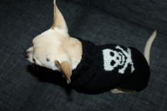 Casual Rock Style Wool Sweater. Pris: 299,-  www.glamdog.org