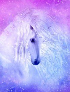 Unicorn And Fairies, Unicorn Fantasy, Unicorn Horse, Unicorn Art, Purple Unicorn, Mystical Animals, Mythical Creatures Art, Fantasy Creatures, Unicornios Wallpaper