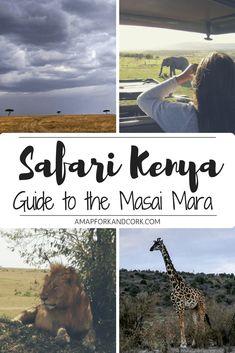 Safari Kenya-2