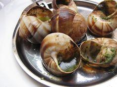 Ποια είναι τα θρεπτικά συστατικά των σαλιγκαριών;