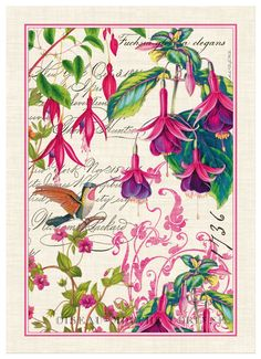 Michel Design Works Fuchsia Cotton Kitchen Towel, Multicolor