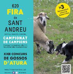 XXII Concurs de Gossos d'Atura de Torroella de Montgrí (desembre 2013)
