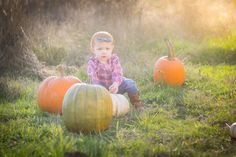 Toddler Girl Fall Style Pumpkin Photography