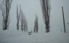 """Drumul Naţional 29 Botoşani – Săveni este închis.    Aproximativ 20 de maşini sunt blocate, la aceasta ora, pe drumul Botoşani Saveni. Mai exact, autoturismele sunt între Săveni şi Ungureni. Vântul bate cu peste 90 km/h, viscoleşte zăpada, stratul de nea ajungând la 30 de cm.    """"Am trimis în zonă utilaje şi încercăm să deblocăm traficul. Avem două utilaje blocate în zonă. Din cauza viscolului puternic, nu se vede la doi metri în faţă"""", a declarat Viorel Zacreţchi. Drum, Snow, Outdoor, Outdoors, Outdoor Games, Outdoor Living, Eyes, Drums"""
