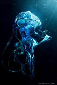 glowing jellyfish - Google Search