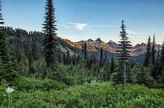 View of the Tatoosh Range by Belinda Greb #naturephotography #landscapephotography #Mountrainiernps #fineartphotography