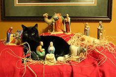 Our cat Porter has joined the nativity scene…