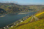 Day Trip down the Rhine with Wine Tasting