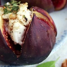 """Elena Szeliga 