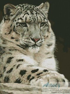 Artecy Cross Stitch. Snow Leopard 2 Counted Cross Stitch Pattern to print online.