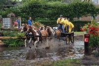 Paardendagen Driezum-Wâlterswâld 25 juli t/m 26 juli 2013   Evenement Wouterswoude (Dantumadeel), Friesland Tijdens de Paardendag komen op vrijdag 26 juli meer dan 125 combinaties/aanspanningen plus honderden pony's en paarden uit het hele land naar Driezum-Wâlterswâld om deel te nemen aan het Open Fries Kampioenschap Paardenmarathon.