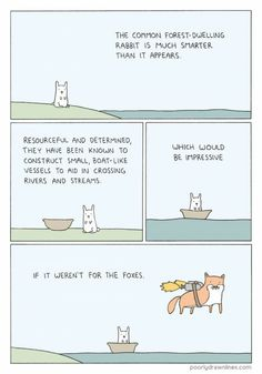 Poor rabbits