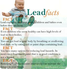 Learn about Lead Safety Heavy Metal Poisoning, Lead Poisoning, Heavy Metal Detox, Science Projects For Kids, Detox Tips, Emotional Pain, Cardiovascular Health, Foot Pads, Health Advice