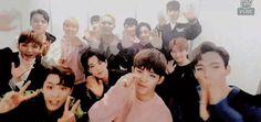Seventeen, gif, and kpop image