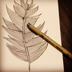 #doodle #feather #illustration #original