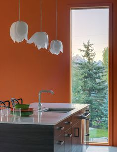A color-drenched kitchen in Wyoming.