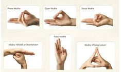 Yoga is very popular all around the world. It makes people feel better and happier. Western medical science recommends regular yoga practice because it can increase the activity of the parasympathetic nervous system. Getting Rid Of Migraines, Prevent Migraines, Gyan Mudra, Hand Mudras, Yoga Master, Bosu Ball, Kundalini Yoga, Social Anxiety, Hiit