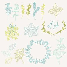 Mint Sprigs Clip Art // Photoshop Brushes // by thePENandBRUSH