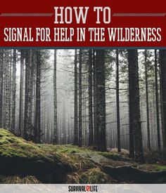 How to Signal for Help in the Wilderness | Wilderness Survival, Skills, Tips And Ideas by Survival Life at http://survivallife.com/2015/12/19/how-to-signal-for-help-in-the-wilderness/