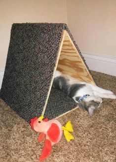 Triangle kitty fort