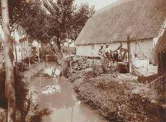 L'horta de Russafa (principi S XX)