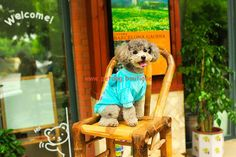 $15.12 Clothes for Puppy Coat