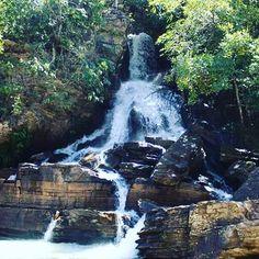 """ ...Ela vai se purificar é só você querer é só você pensar no bem... Você pensar em Deus ... "" Com Certeza - Planta e Raiz  #naturelove #naturephotography #nature #natureporn #nature_perfection #natureza #cachoeira #waterfall #outdoors #brazil #Pirenopolis #piri #goiasémais #goias #photooftheday #photolove #canonphotography #canon #canon_official #travelgram #trip #travelphotography"