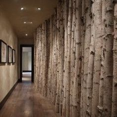 I really want to do something like this with birch or aspen as a room separater!  Birch wall by WORTH Interiors