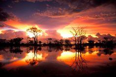 Travel all the world: Etosha National Park - Namibia