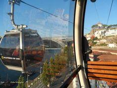 Cida_Wern em Vila Nova de Gaia - TripAdvisor