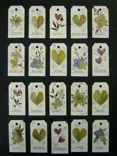 Make a Valentine Sampler out of real pressed flowers