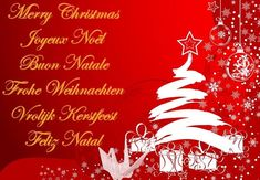 Send and share best Christmas messages, short christmas messages...