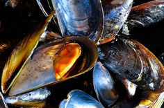 Tahong! (Mussels by IvanPavao)