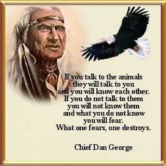 If you talk to the animals they listen and will talk to you too.