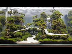 My Underwater waterfall-sand waterfall in aquarium by an binh lee Aquarium Sand, Tropical Fish Aquarium, Tropical Fish Tanks, Aquarium Fish Tank, Planted Aquarium, Small Water Gardens, Fish Pond Gardens, Fish Aquarium Decorations, Beautiful Tropical Fish