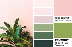 Tropical Vibes: Pink and Green Colour Crush! - homeArama Pink Green Bedrooms, Tropical Bedrooms, Pink Room, Green Rooms, Bedroom Green, Bedroom Colour Palette, Pink Palette, Palette Art, Green Color Schemes