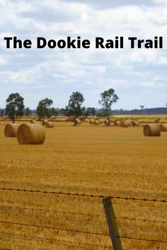 The Dookie Rail Trail: Cycling in North East Victoria Gladstone Hotel, Shady Tree, Does Anyone Know, Wombat, Rise Above, Make Time, Australia Travel, Us Travel, Distance