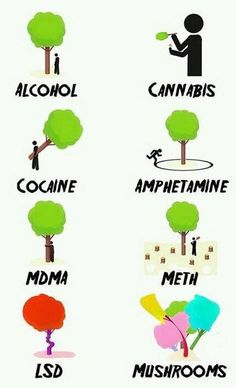 different stages of drugs explained with trees..:)