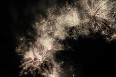 Fireworks, Celebrate, July 4Th, Freedom, Explode, Party Photo - Visual Hunt