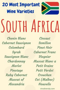 South African Wine Map shows Sauvignon Blanc, Cabernet Sauvignon, South African Wine, Vegan Wine, Chenin Blanc, Wine Guide, Wine Bottle Labels, Wine Making, Wine Recipes