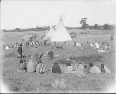 Division of beef. A group of Indians (Nation?) sitting and watching the division…
